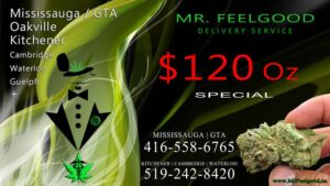 30027207 120 oz weedmaps Mississauga kitchener Oakville cambridge waterloo ontario marijuana cannabis weed marijuana dispensary special best delivery service