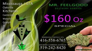 39548787 160 oz weedmaps Mississauga kitchener Oakville cambridge waterloo ontario marijuana cannabis weed Bud dispensary special best delivery service