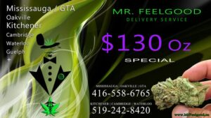 43602067 130 oz weedmaps Mississauga kitchener Oakville Cambridge waterloo ontario marijuana cannabis weed Bud dispensary special best delivery service