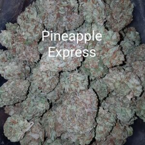 71621918 Pineapple Express strain Weed Sativa weedmaps kitchener cambridge waterloo Guelph ontario marijuana  Mississauga GTA Toronto Etobicoke cannabis  delivery service