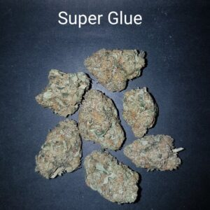 81543609 Super Glue AAAA Quad Strain Weed Bud Dispensary weedmaps Canna West CannaWest Toronto GTA Greater Area Etobicoke North East York Downtown cannabis special delivery