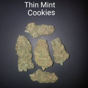 87307622 Thin Mint Cookies AAAA Quad strain Weed Bud Dispensary weedmaps Canna West CannaWest Toronto GTA Greater Area Etobicoke North East York Downtown cannabis special delivery