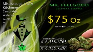 87526530  75 oz special cheap weedmaps Mississauga kitchener cambridge waterloo ontario marijuana cannabis weed marijuana dispensary special delivery service