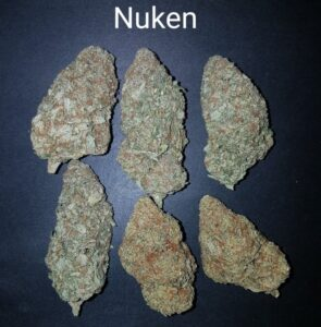 87561592 Nuken AAAAA+ Quad strain Weed Bud Dispensary weedmaps Canna West CannaWest Toronto GTA Greater Area Etobicoke North East York Downtown cannabis special delivery