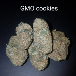 87724298 GMO Cookies AAAA  Quad strain Weed Bud Dispensary weedmaps Canna West CannaWest Toronto GTA Greater Area Etobicoke North East York Downtown cannabis special de