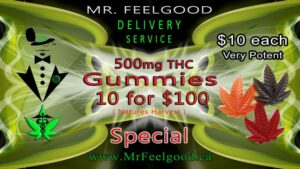 94837905 100  10 Gummies 500 mg thc Natures Harvest full spectrum weedmaps Oakville Mississauga ontario medical  marijuana cannabis weed special delivery dispensary service